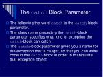 the catch block parameter