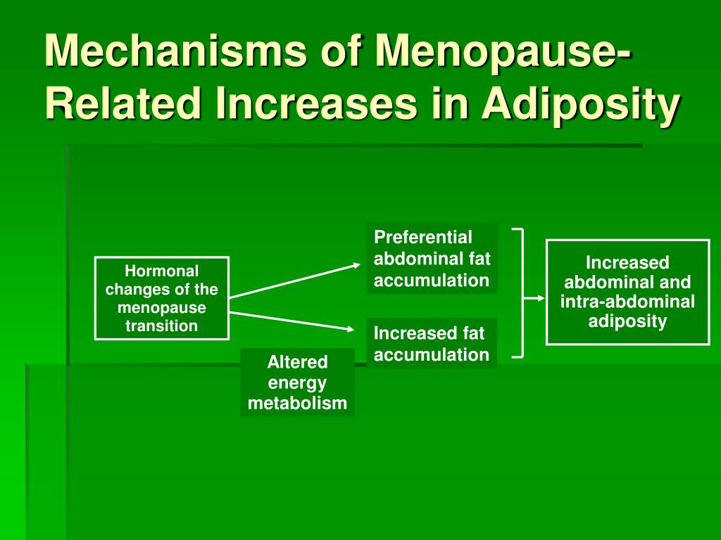 Mechanisms of Menopause-Related Increases in Adiposity