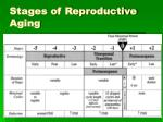 stages of reproductive aging11
