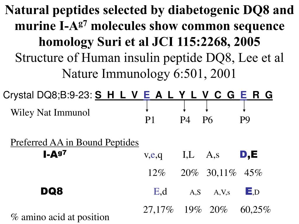 Natural peptides selected by diabetogenic DQ8 and murine I-A