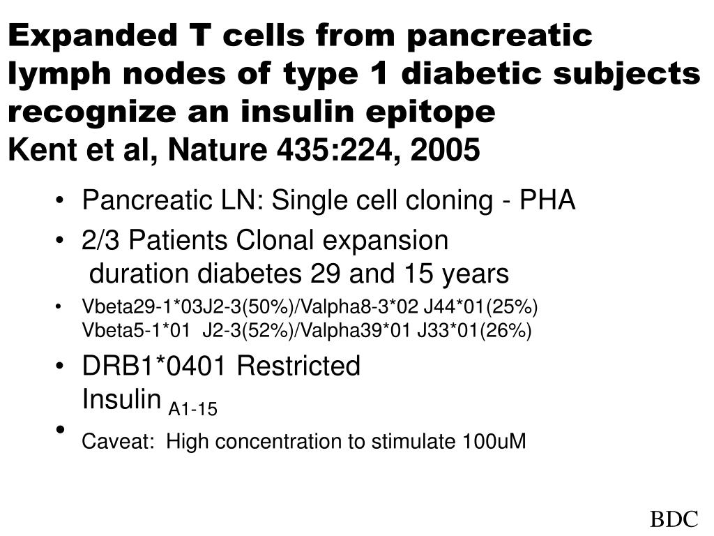 Expanded T cells from pancreatic lymph nodes of type 1 diabetic subjects recognize an insulin epitope