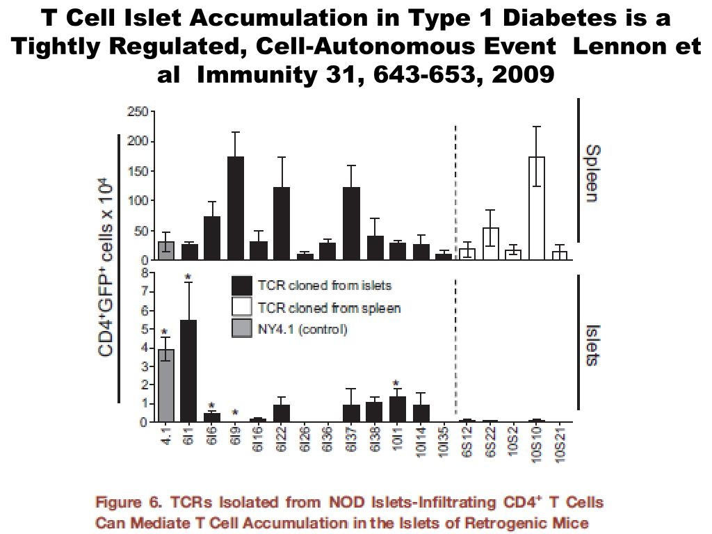 T Cell Islet Accumulation in Type 1 Diabetes is a Tightly Regulated, Cell-Autonomous Event  Lennon et al  Immunity 31, 643-653, 2009