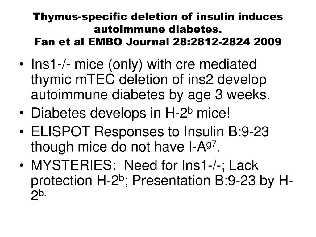 Thymus-specific deletion of insulin induces autoimmune diabetes.