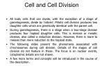 cell and cell division10