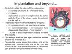 implantation and beyond