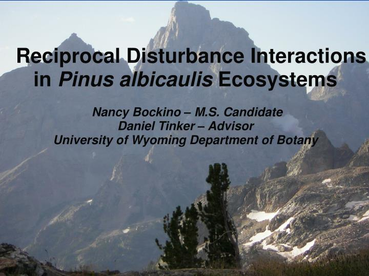 Reciprocal Disturbance Interactions