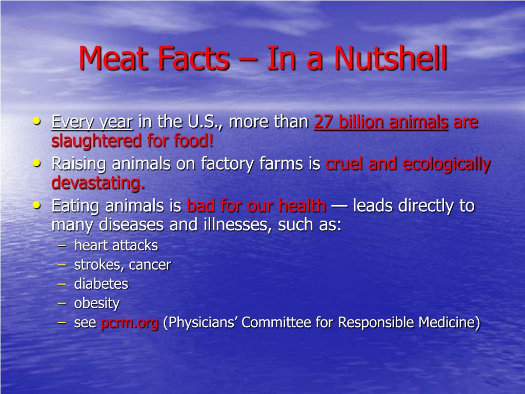 Meat Facts – In a Nutshell