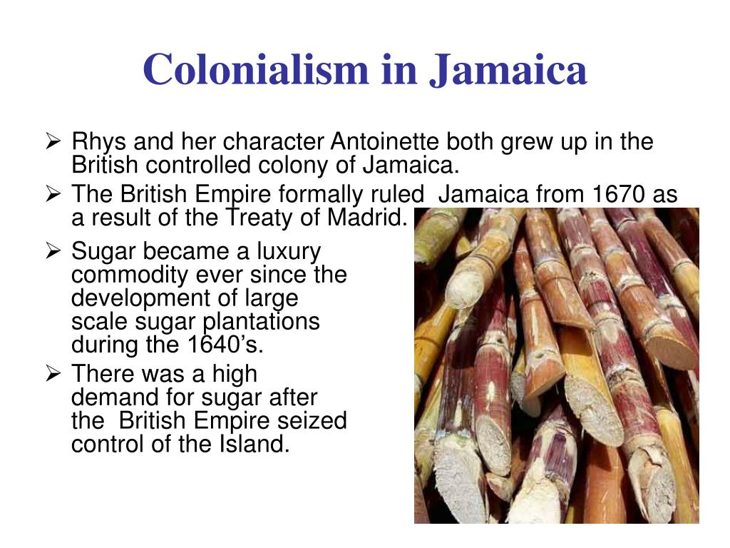 Rhys and her character Antoinette both grew up in the British controlled colony of Jamaica.