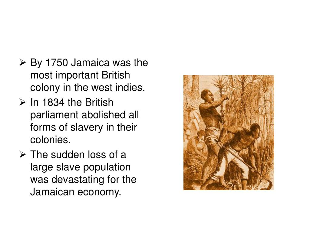 By 1750 Jamaica was the most important British colony in the west indies.