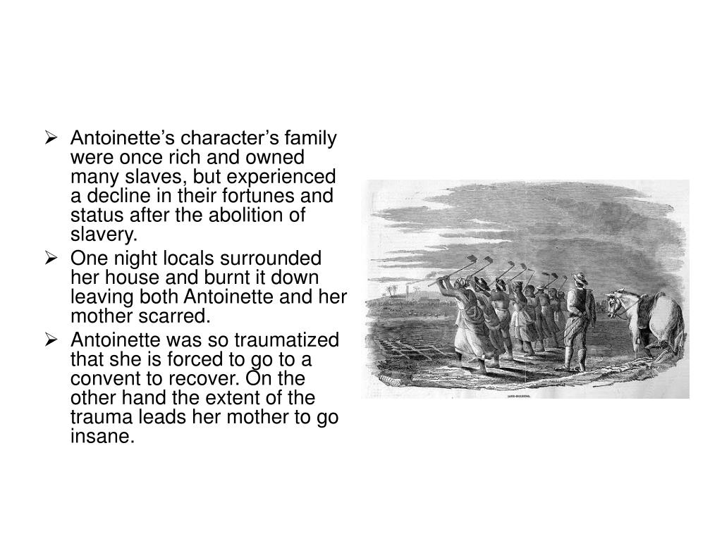 Antoinette's character's family were once rich and owned many slaves, but experienced a decline in their fortunes and status after the abolition of slavery.