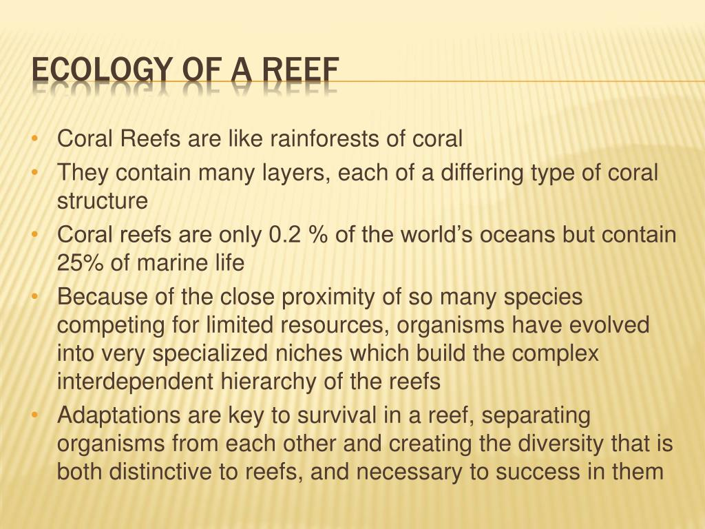 Coral Reefs are like rainforests of coral