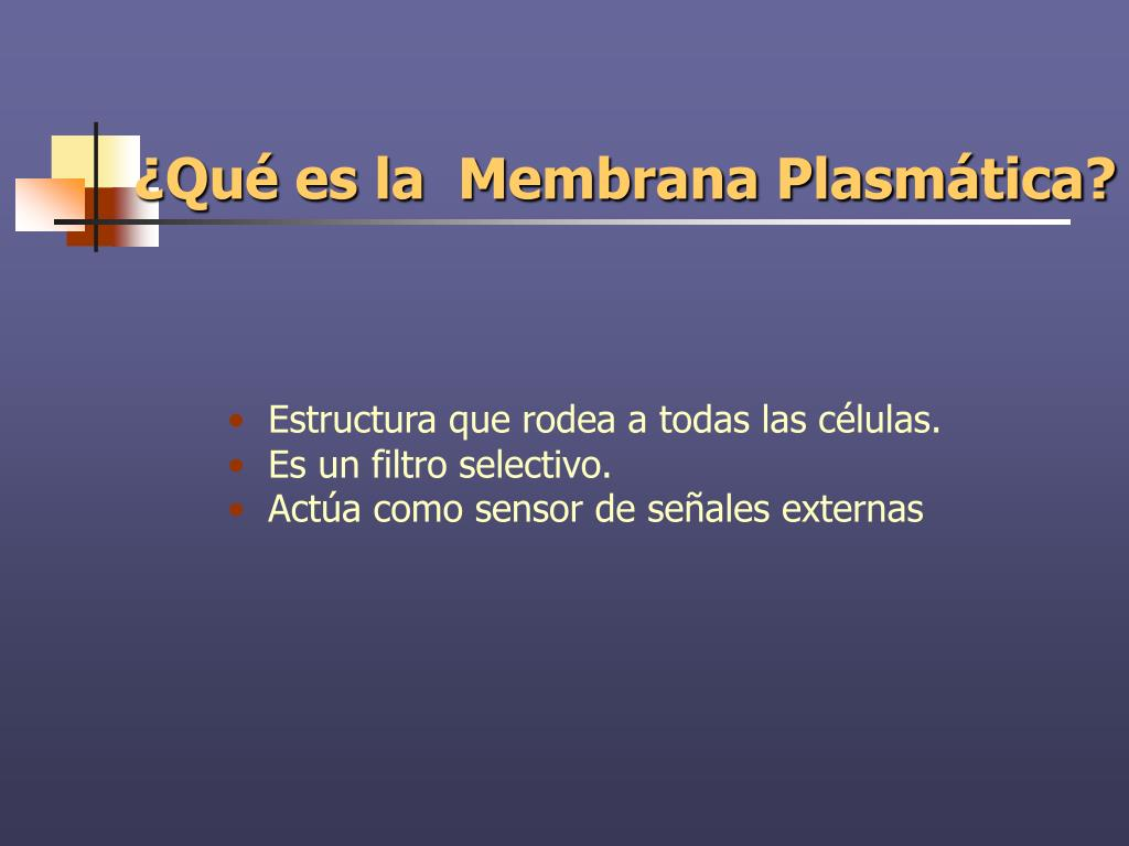 ¿Qué es la  Membrana Plasmática?