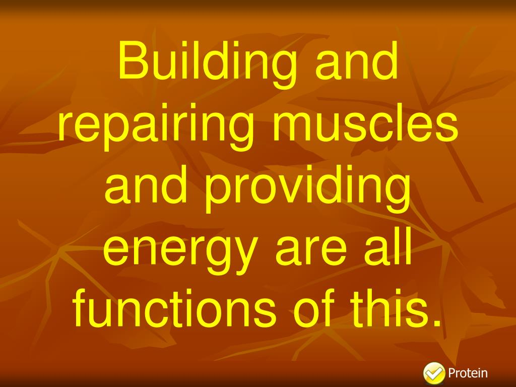 Building and repairing muscles and providing energy are all functions of this.