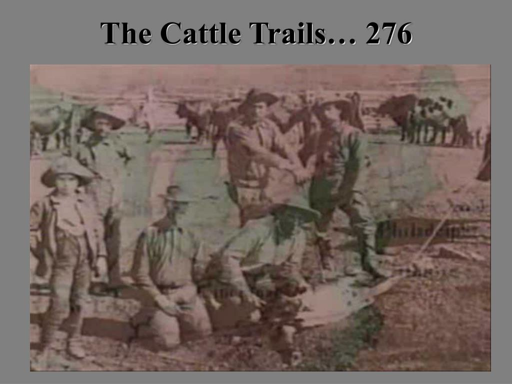 Cattle Trails to Trenches:Story of a Cowboy in Tex,Can, and Fr, Smith 1970 170601