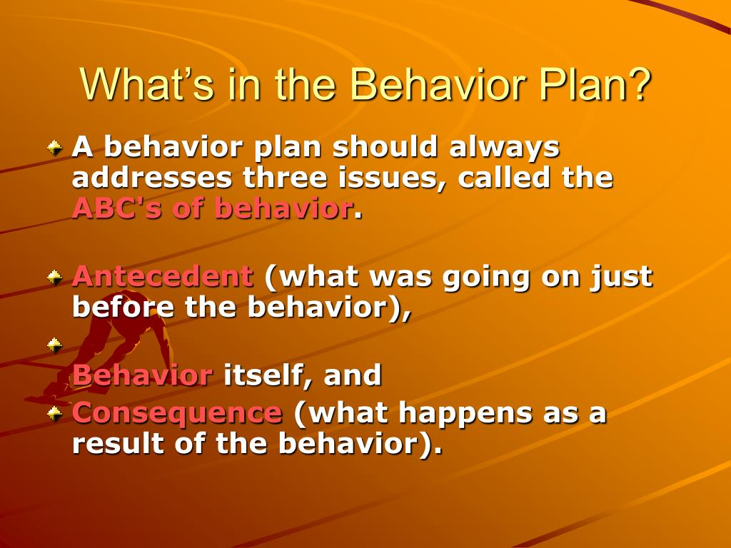 What's in the Behavior Plan?