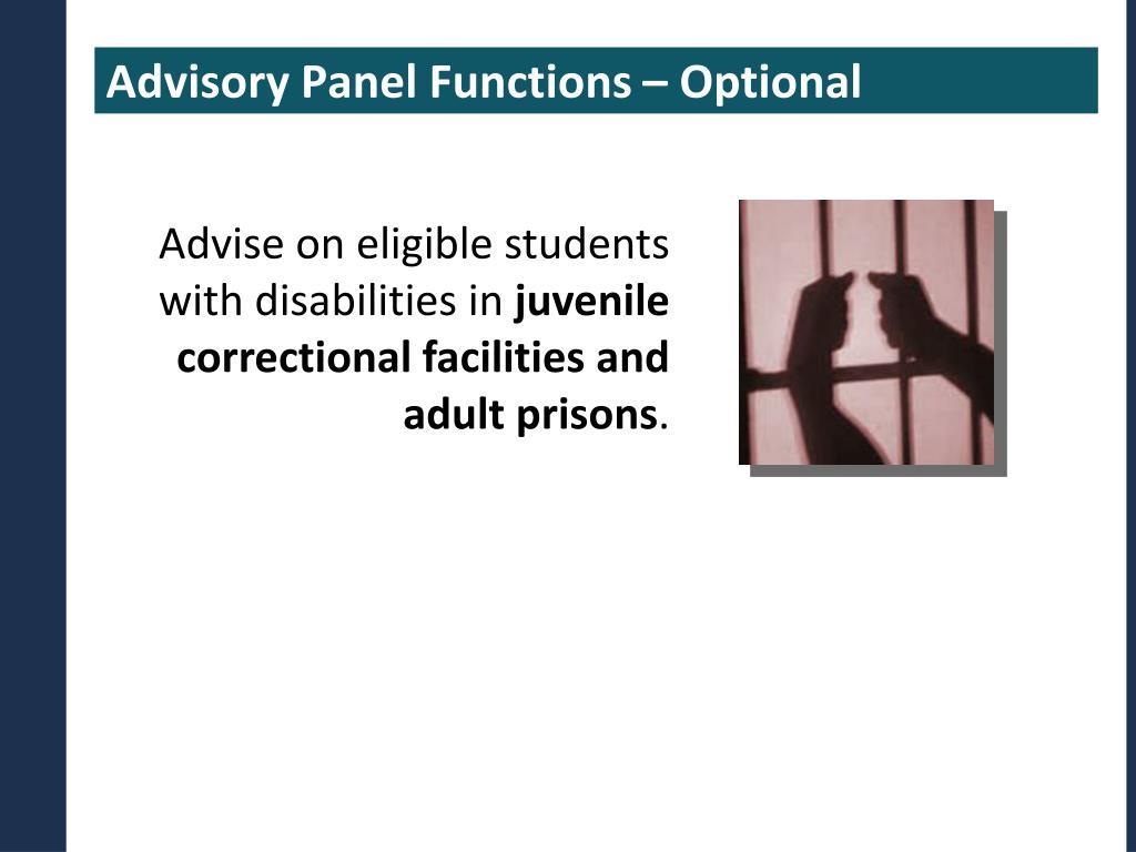 Advisory Panel Functions – Optional