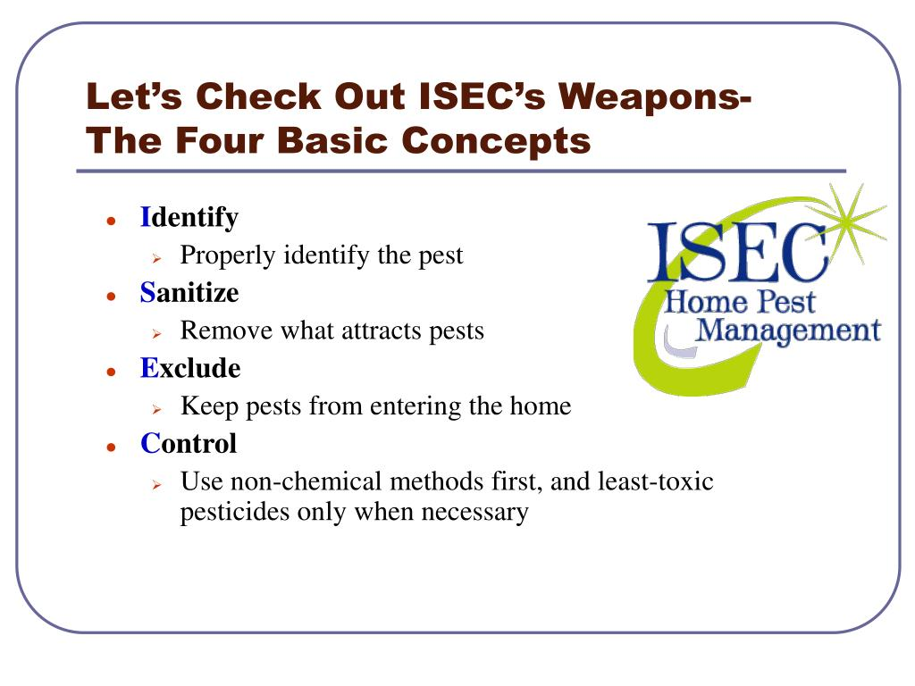 Let's Check Out ISEC's Weapons-