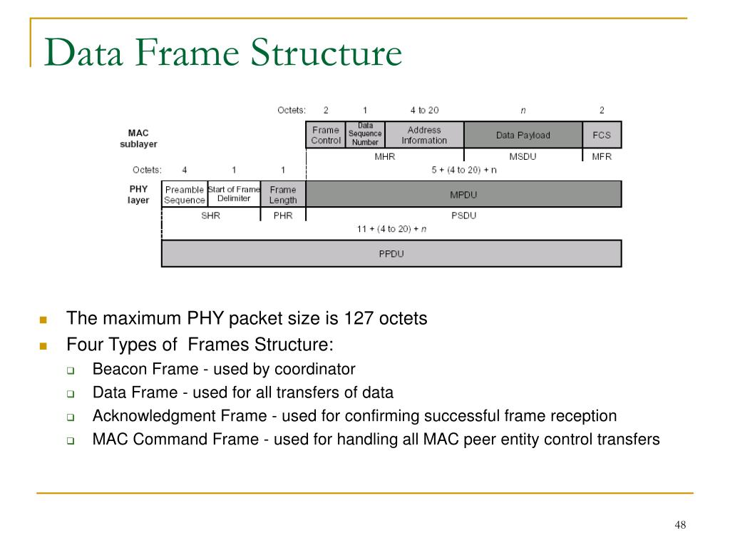 Data Frame Structure