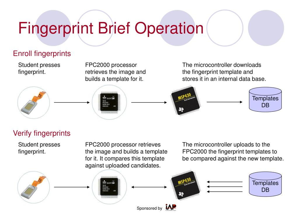 Fingerprint Brief Operation