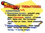 digenetic trematodes3