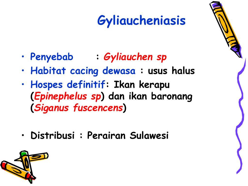 Gyliaucheniasis