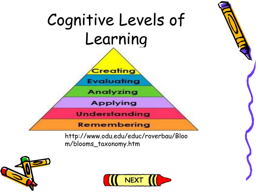 Cognitive Levels of Learning