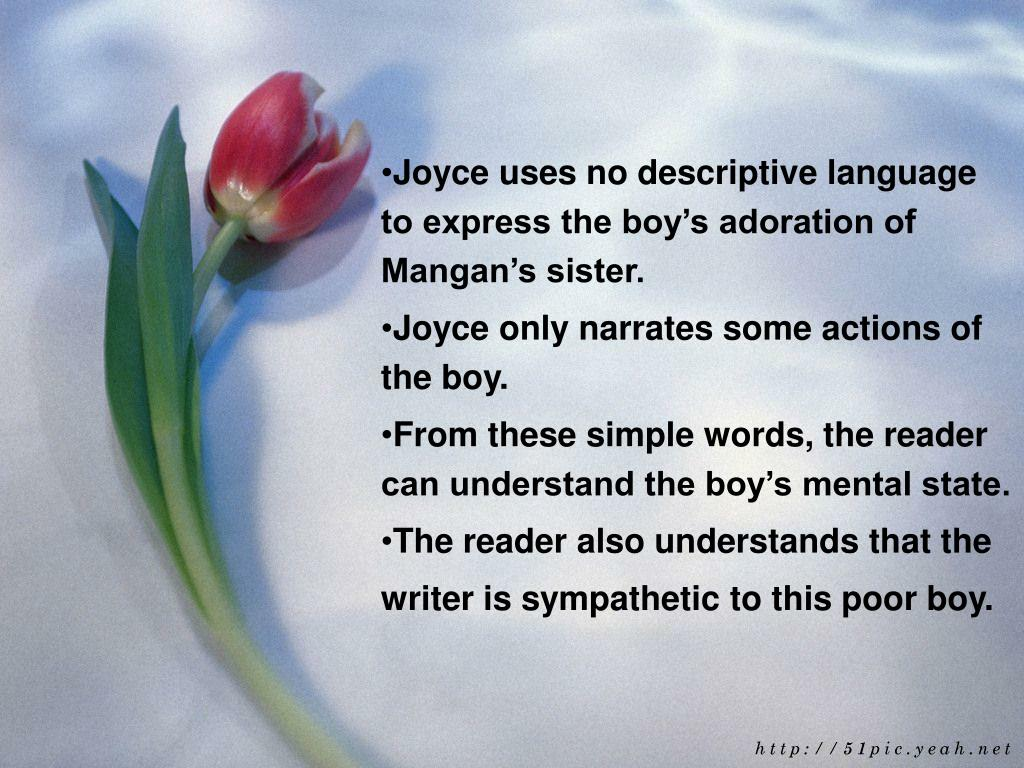 Joyce uses no descriptive language to express the boy's adoration of Mangan's sister.