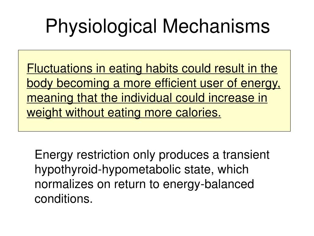 Fluctuations in eating habits could result in the body becoming a more efficient user of energy, meaning that the individual could increase in weight without eating more calories.