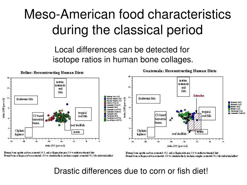 Meso-American food characteristics