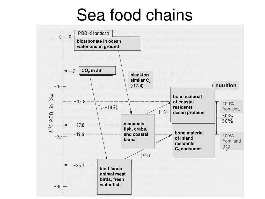 bicarbonate in ocean