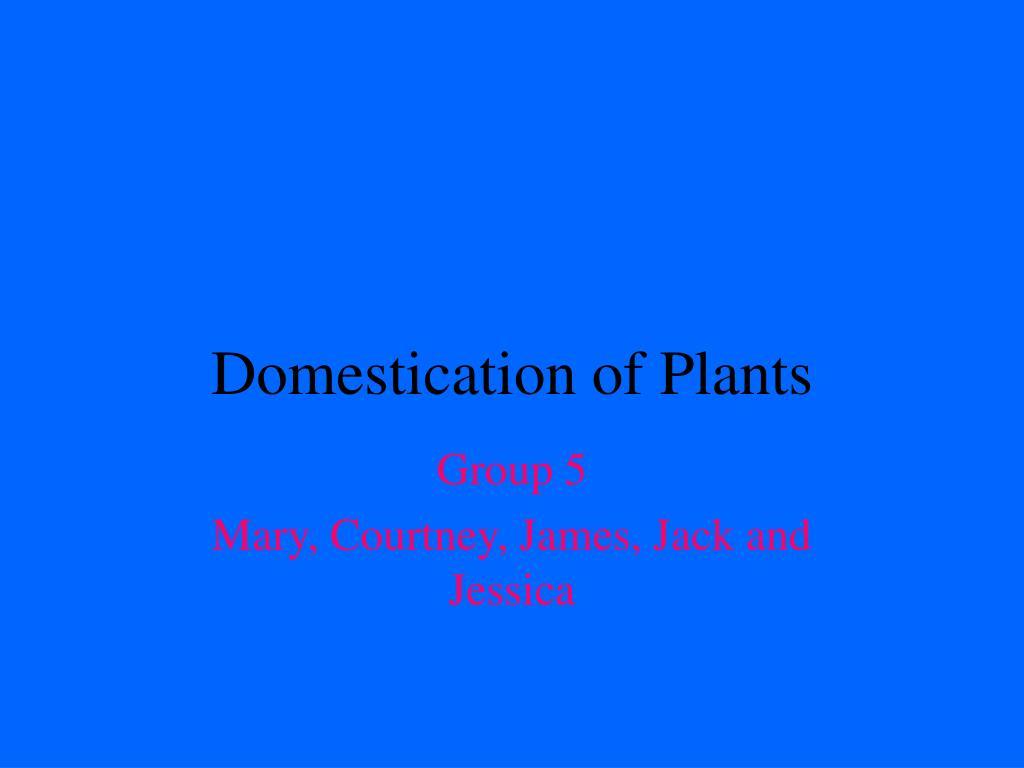 Domestication of Plants