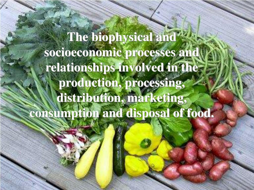The biophysical and socioeconomic processes and relationships involved in the production, processing, distribution, marketing, consumption and disposal of food.