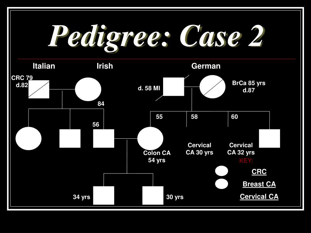 Pedigree: Case 2