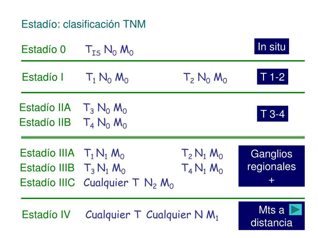 Estadío: clasificación TNM