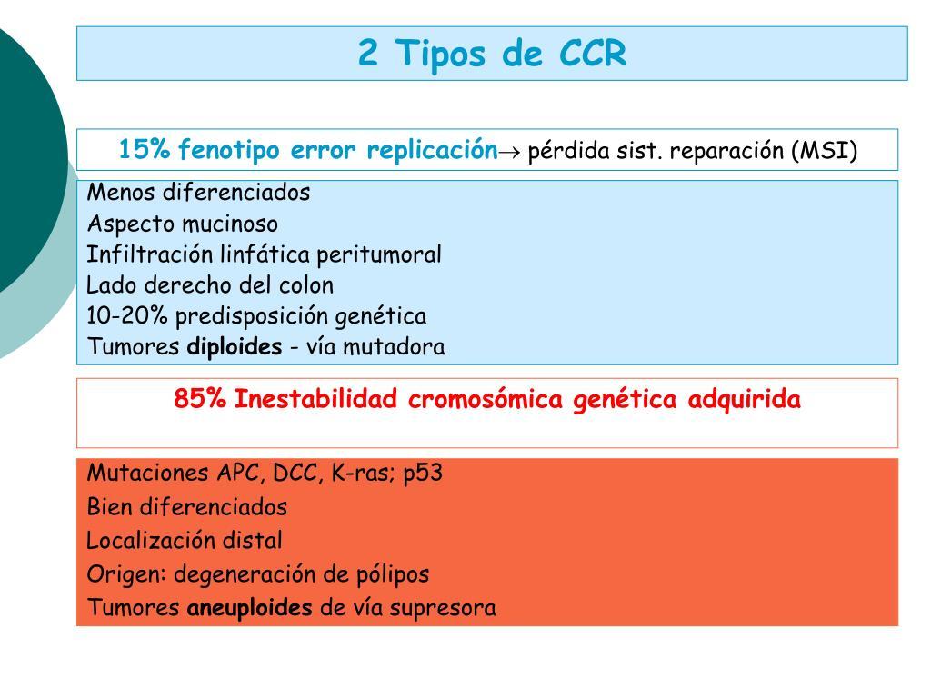 2 Tipos de CCR