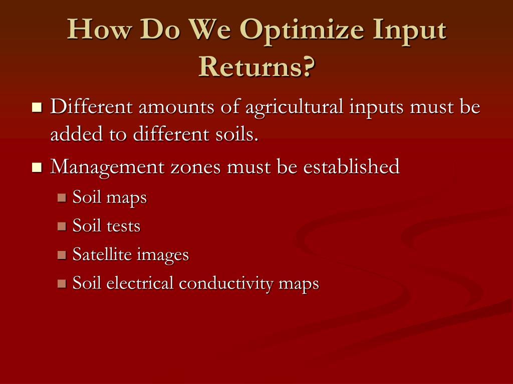 How Do We Optimize Input Returns?