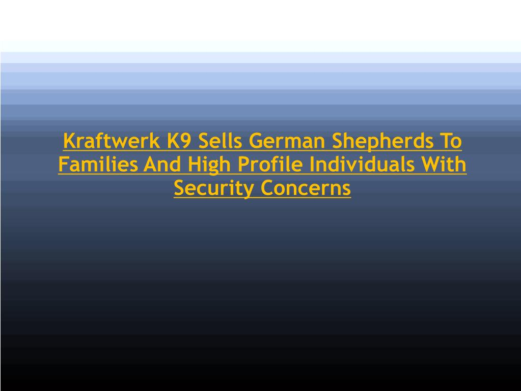 Kraftwerk K9 Sells German Shepherds To Families And High Profile Individuals With Security Concerns