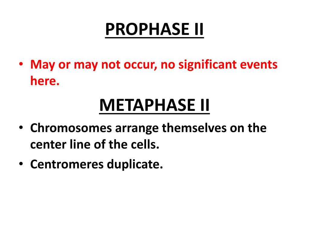 PROPHASE II
