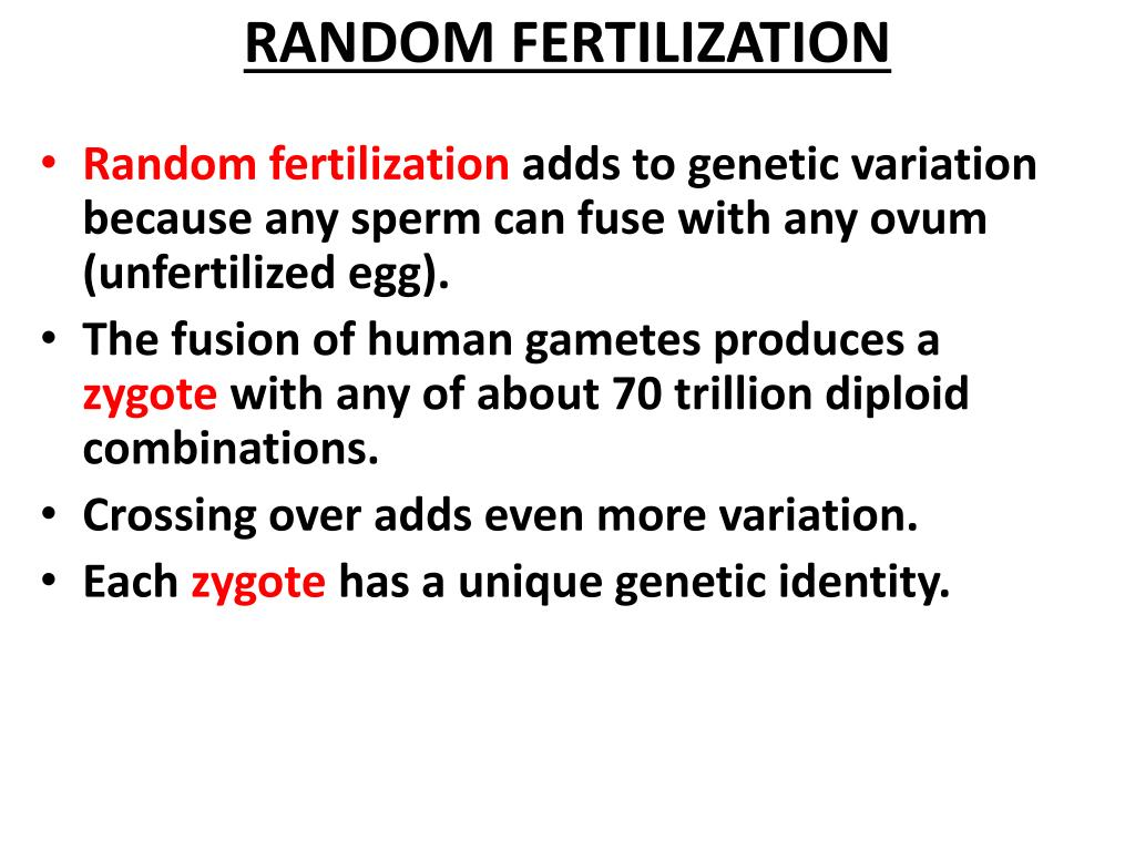 RANDOM FERTILIZATION