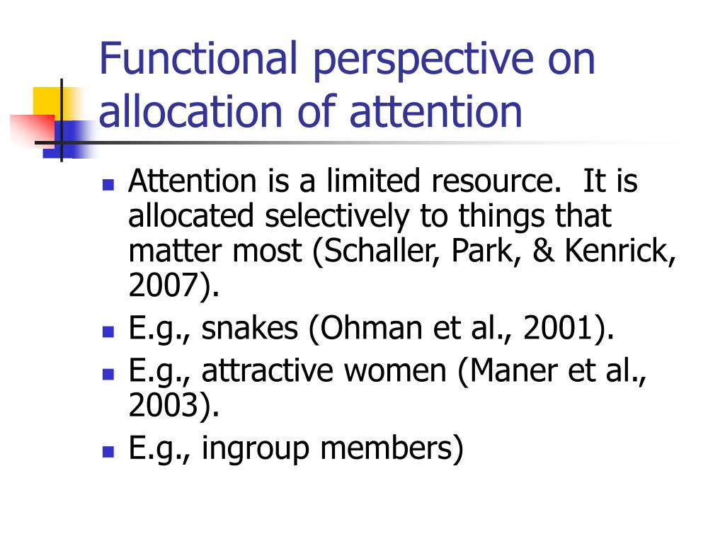 Functional perspective on allocation of attention