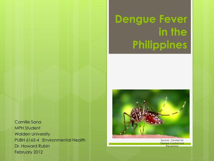 Dengue fever in the philippines l.jpg