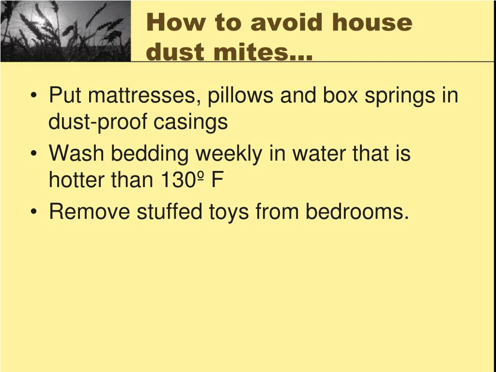 How to avoid house dust mites…