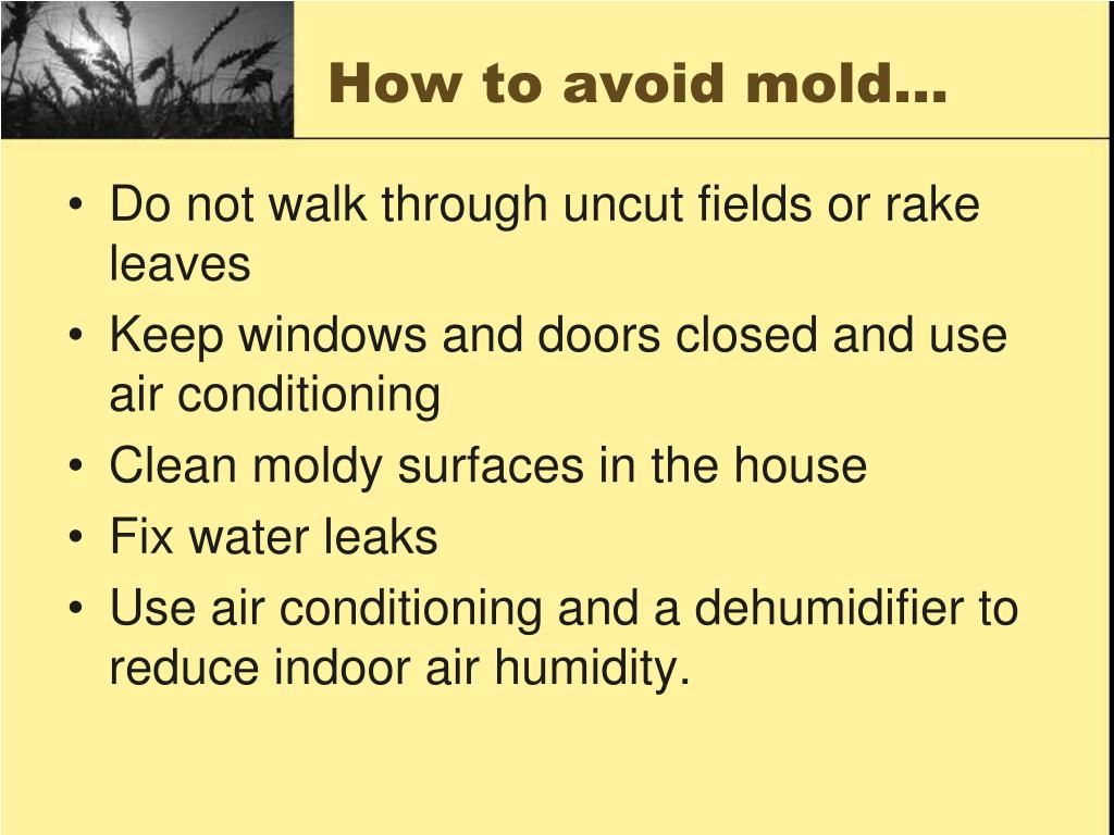 How to avoid mold…