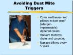 avoiding dust mite triggers30