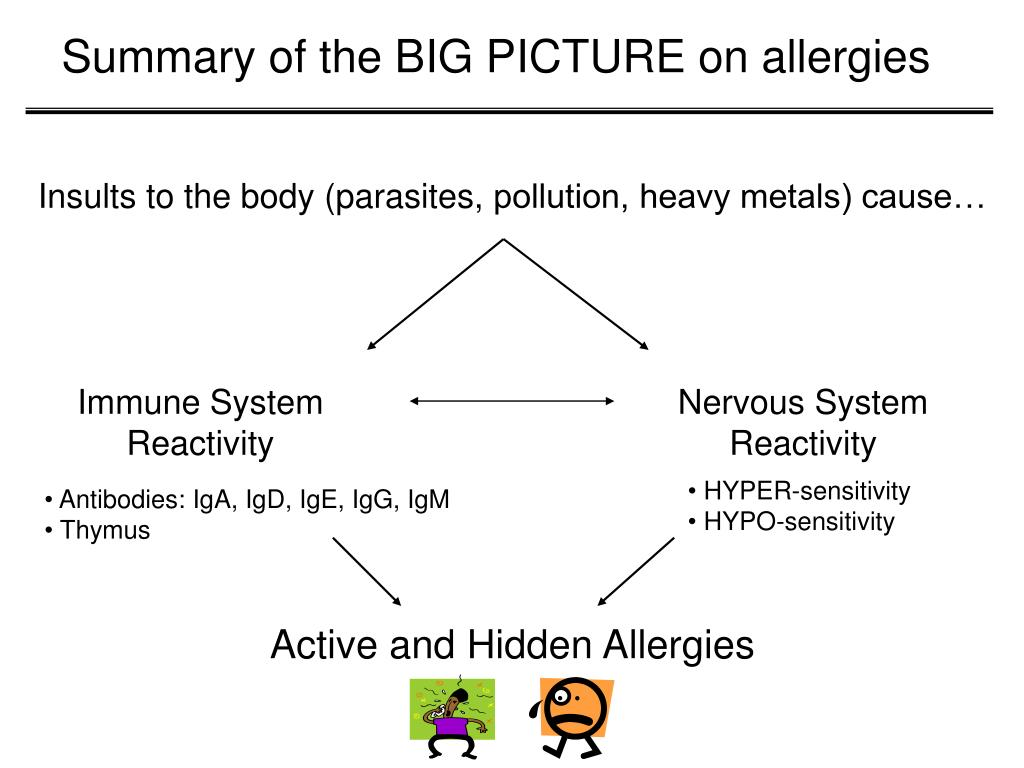Summary of the BIG PICTURE on allergies