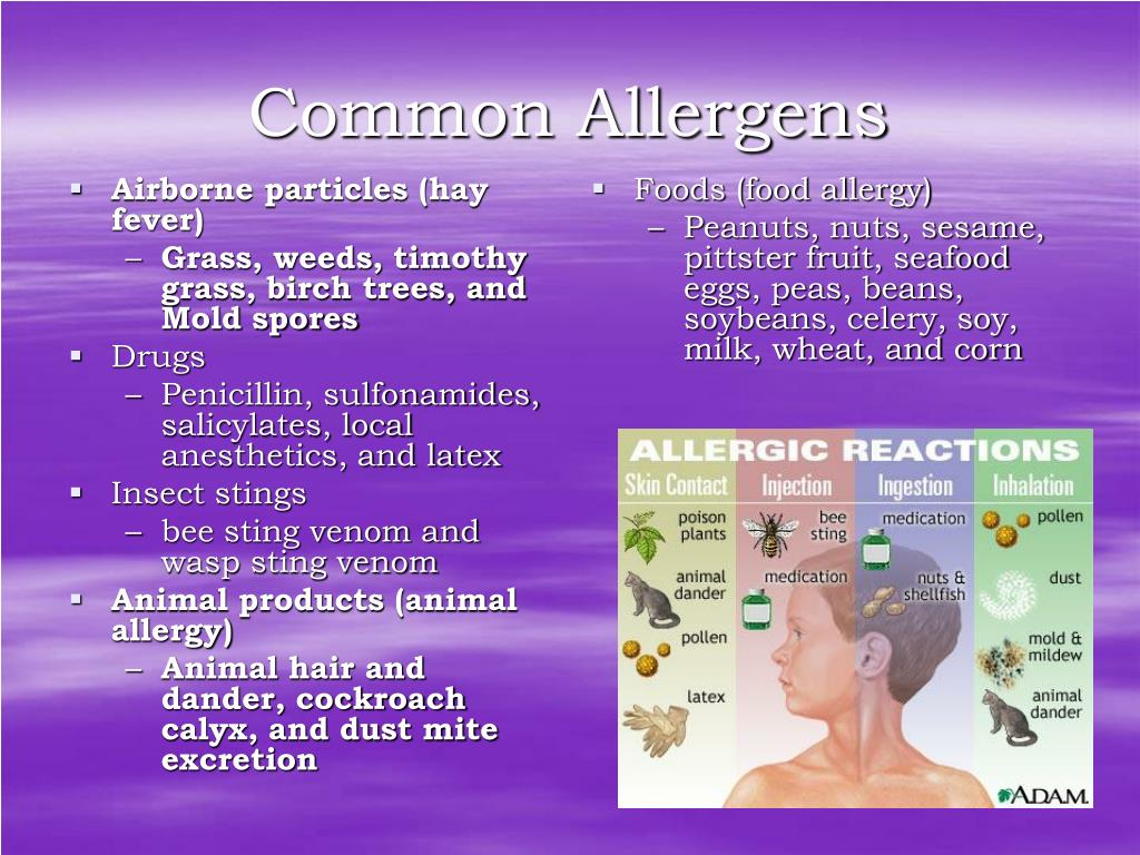 Airborne particles (hay fever)