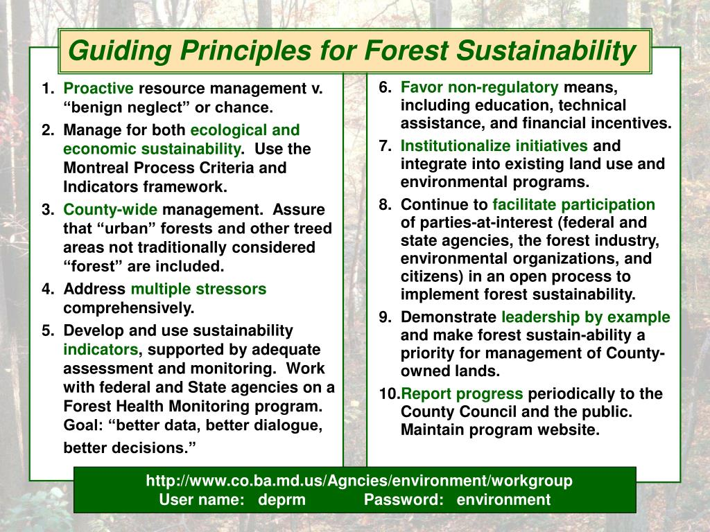 Guiding Principles for Forest Sustainability