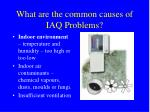 what are the common causes of iaq problems