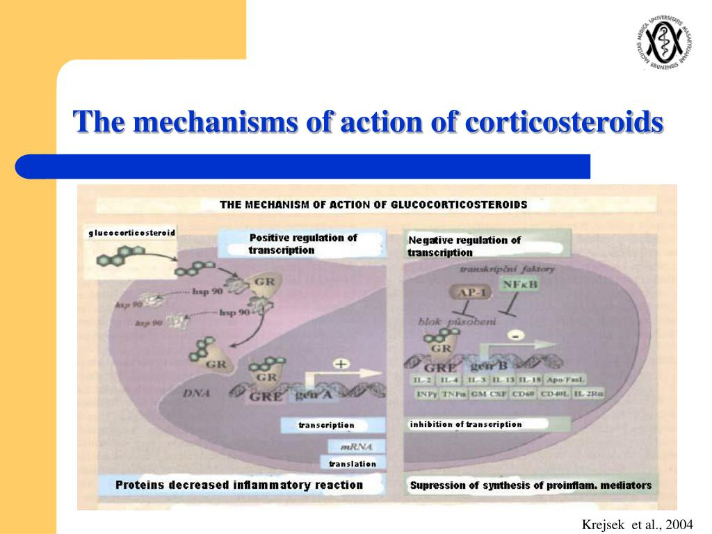 The mechanisms of action of corticosteroids