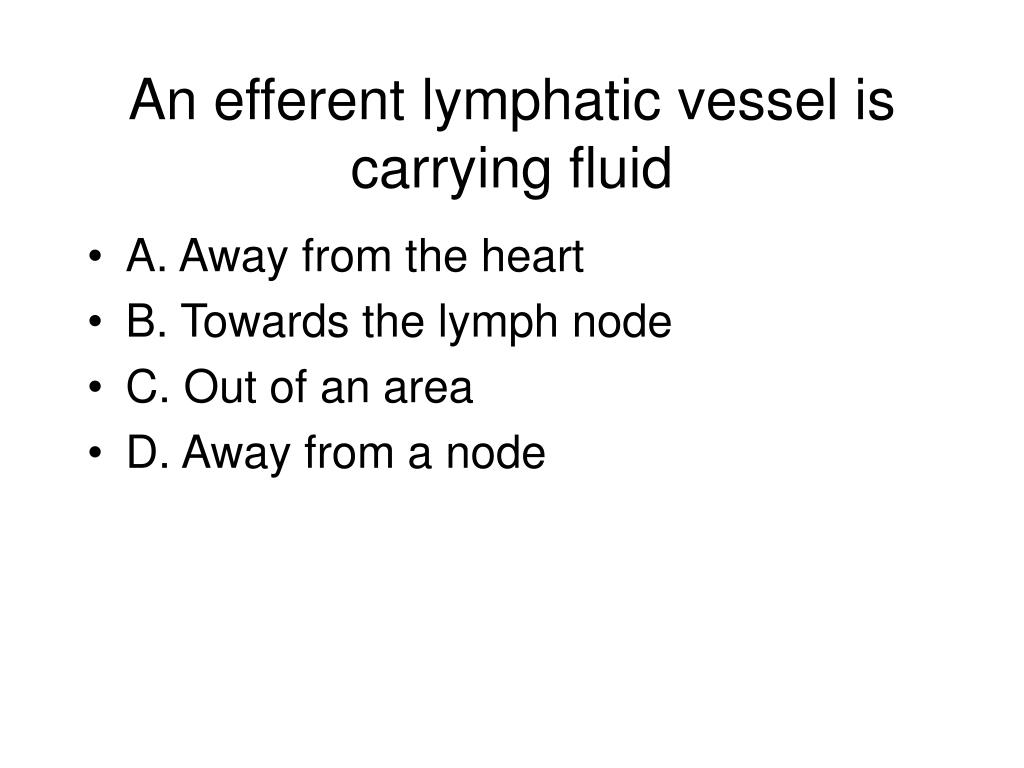 An efferent lymphatic vessel is carrying fluid